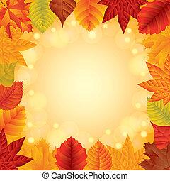 가을의 잎, 벡터, 구조
