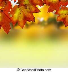 가을의 잎