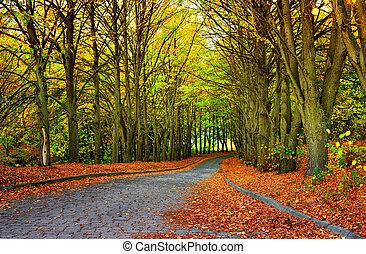 가을, 계절, 공원