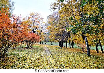 가을, 공원