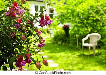 가정 정원