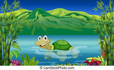 거북, 바다