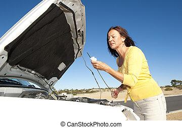 검사, 차 여성, 기름