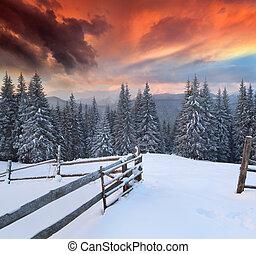 겨울, 다채로운, 극적인, 조경술을 써서 녹화하다, 산., 해돋이