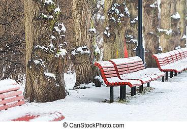 겨울, 벤치