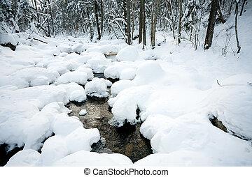 겨울, 억압되어, 눈, 강, 숲