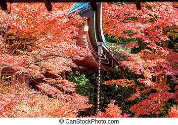 계절, 가을, 일본