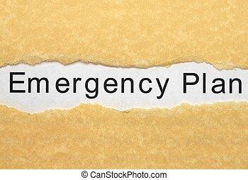 계획, 긴급 사태