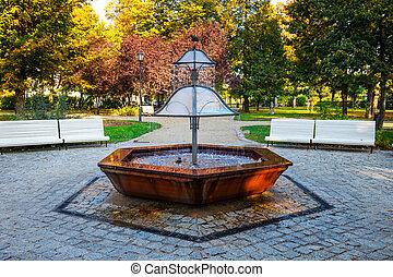 공원, 폴란드, 샘, 녹색, sopot