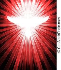 광선, 비둘기, 빛나는