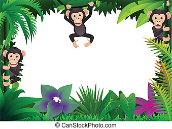 귀여운, 침팬지, 정글
