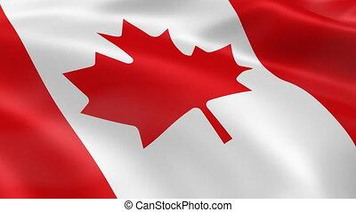 기, 바람, canadian
