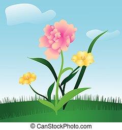 꽃의, 봄, 목초지