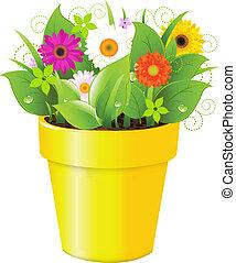 꽃, 냄비 따위 하나 가득, 풀