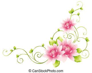 꽃, 덩굴