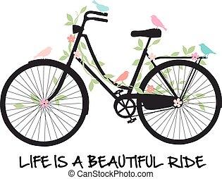 꽃, 자전거, 새