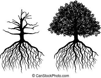 나무, 고립된, 뿌리
