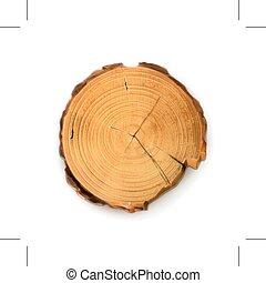 나무, 공급 절감, 그루터기