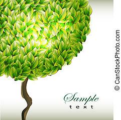 나무, 녹색의 배경