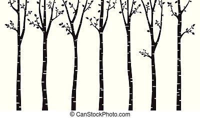 나무, 백색, 실루엣, 배경, 자작나무