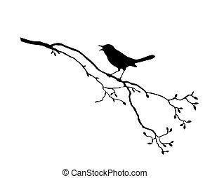 나무, 벡터, 실루엣, 새, 가지