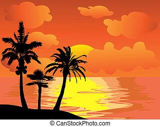 나무, 손바닥, 일몰, 섬