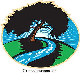 나무, 우여 곡절, 피캔, retro, 강, 해돋이