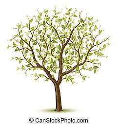 나무, leafage, 녹색