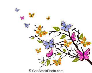 나비, 가지