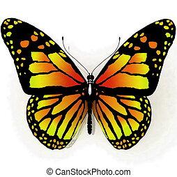 나비, 파랑, 은 색깔을 고립시켰다