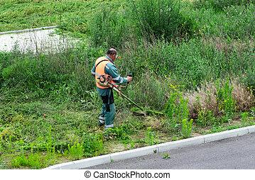 노동자, 걱정, 잔디 깎는 사람, 깎는 것, 손, 손질하는 사람, 절단, 잔디, 또는, 가솔린, 도구, backyard.gardening, 도시, 키가 큰, mower., 과정, 트리밍, 풀, field.worker, equipment., 그린 파크
