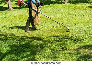 노동자, 잔디 깎는 사람, 들판, 절단, 녹색 잔디