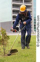 노동자, 절단, 녹색 잔디, 남자