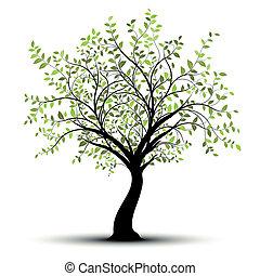 녹색의 백색, 벡터, 나무, 배경