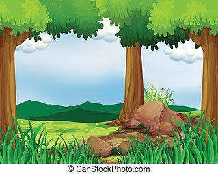 녹색의 숲, 바위