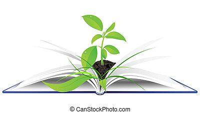 녹색의 식물, 책, 열려라, 나이 적은 편의