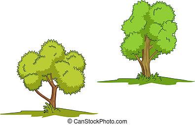 녹색, 고립된, 나무