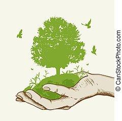 녹색 나무, 손