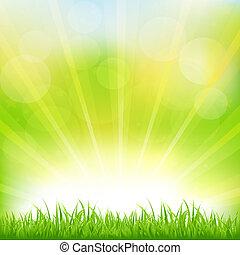 녹색 잔디, 구름 사이부터 날렵하게 쪼일 수 있는 일광, 배경