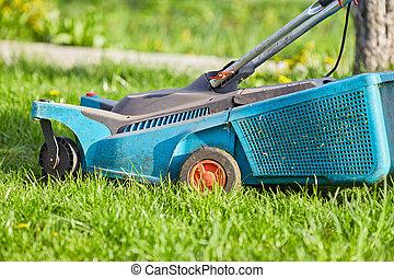 녹색, 잔디 깎는 사람, 뒤뜰, 풀을 깎는 것, 잔디
