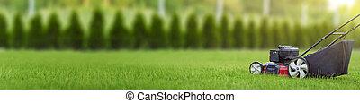 녹색 잔디, 절단, 잔디, 뒤뜰, 잔디 깎는 사람