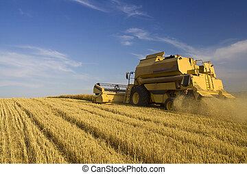 농업, -, 겸하다