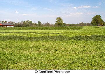 농장 땅, bavaria