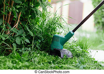 높은, 걱정, trimmer., 잔디밭 채초, 개념, 풀, 전기