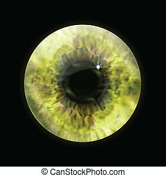 눈, 벡터, macro., 눈동자, 황색