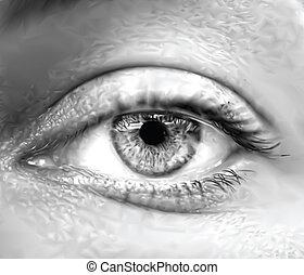 눈, 벡터, macro., 회색, 여성