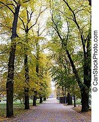 대성당, 공원, vilnius, 도시