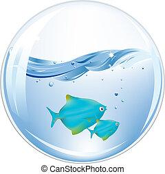 대양, 공, 물고기