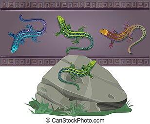 도마뱀, 색, 세트, 여러 가지이다