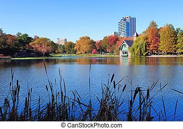 도시, 센트럴팍, 가을, 요크, 새로운